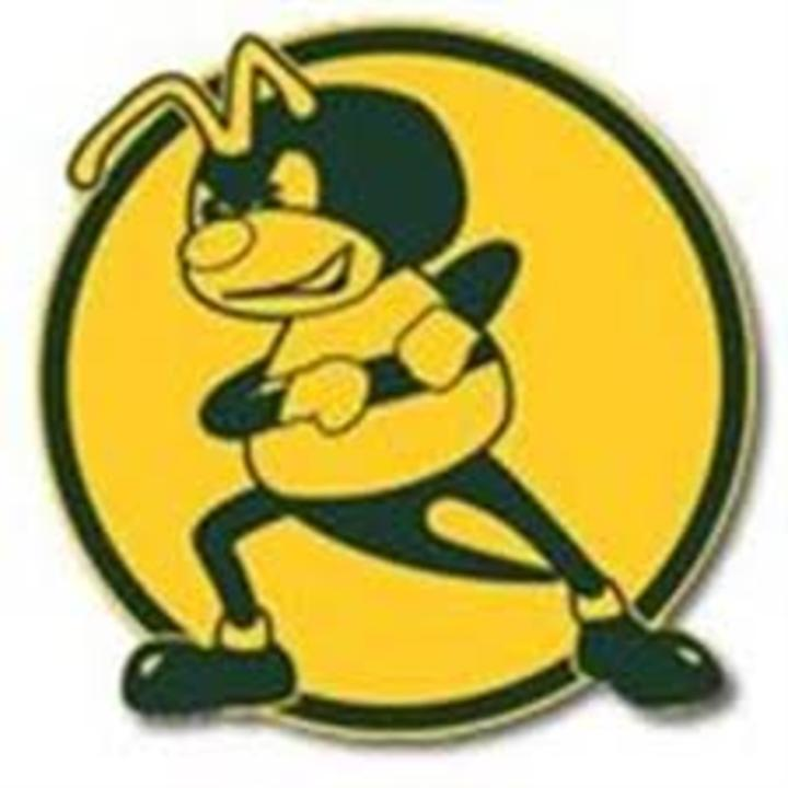 Simonds High School mascot