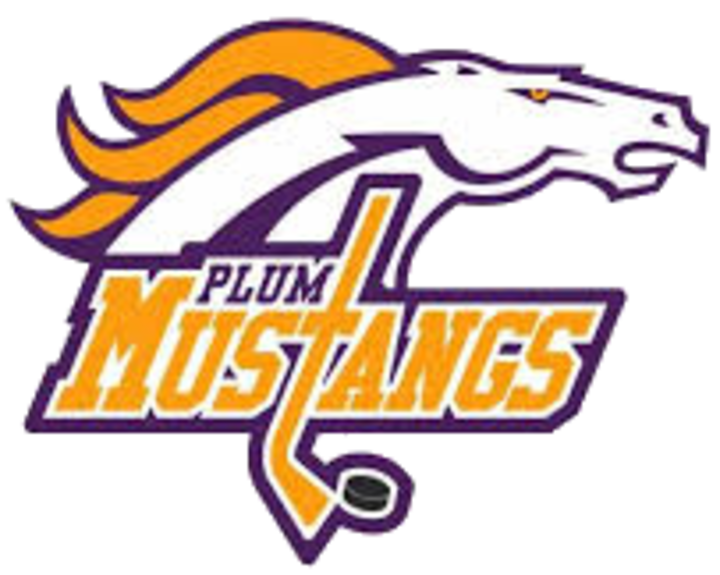Plum High School