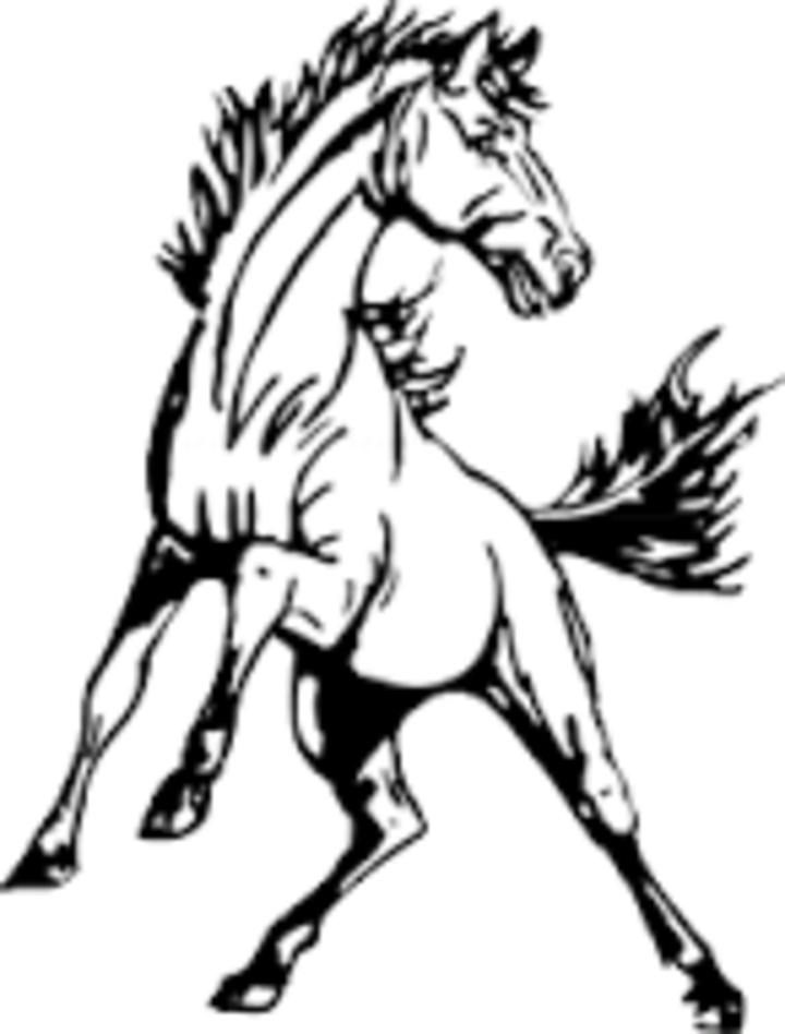 Marion County. High School mascot