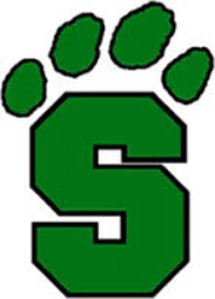 Salem International University mascot