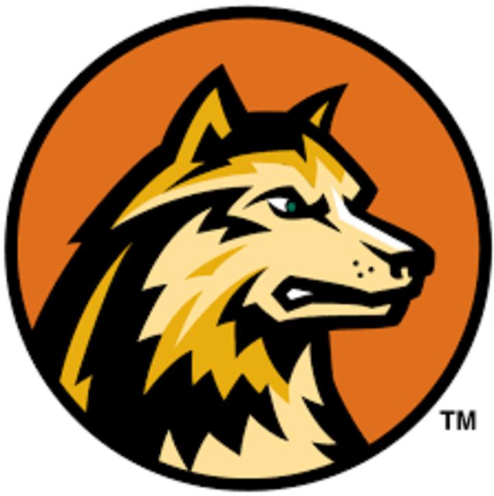 Wright State University mascot