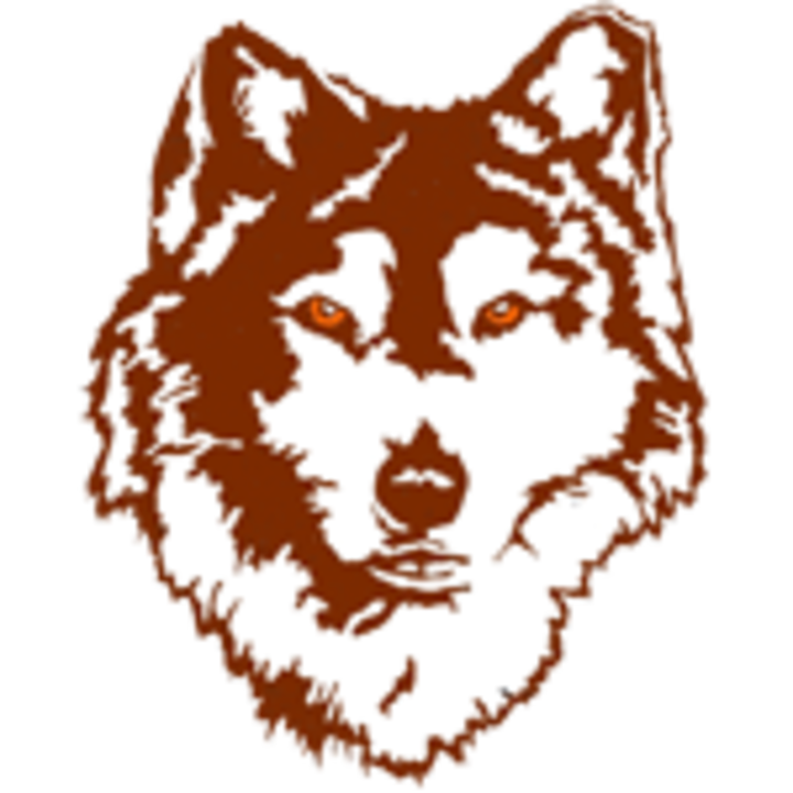 Portage Northern High School mascot
