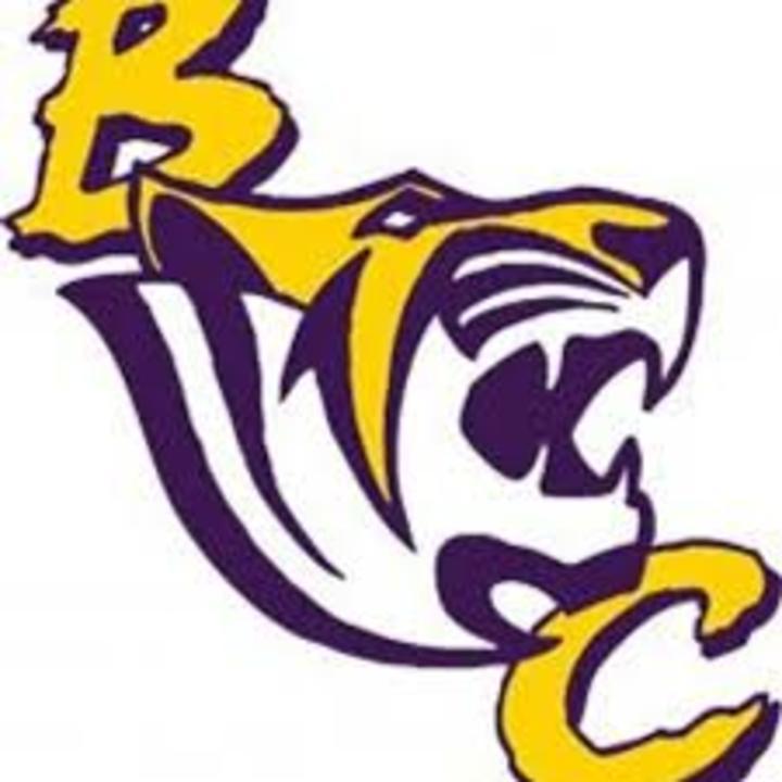 Benedict College mascot