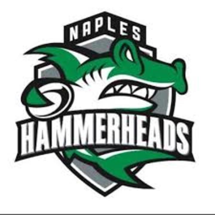 Naples Hammerheads