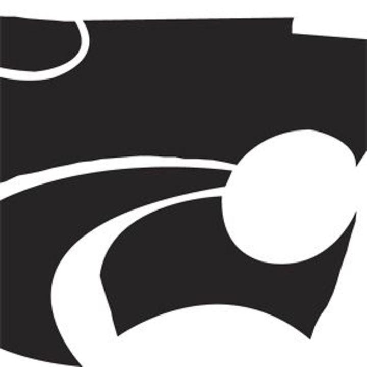 Destiny Christian School mascot