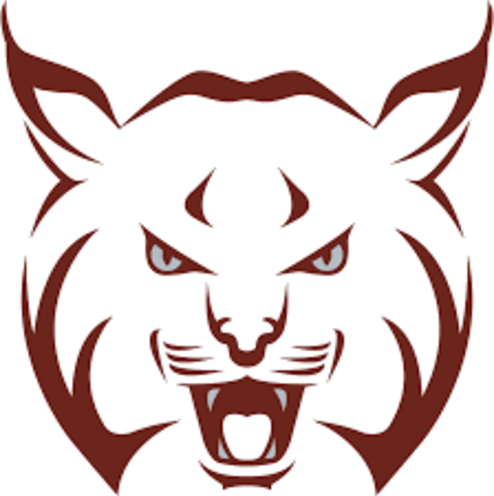 Beaver Area High School mascot
