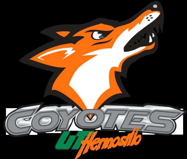 UTH mascot