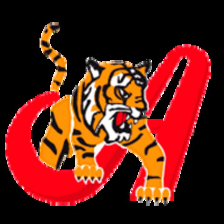 Tigres de Aragua mascot