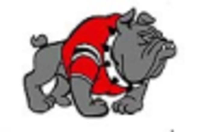 Gallatin High School mascot