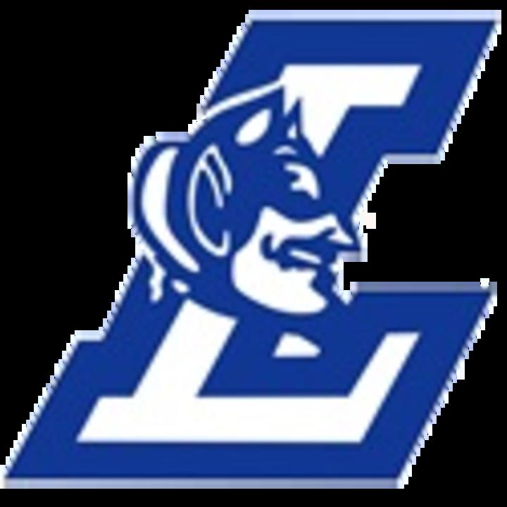 David Anderson High School mascot