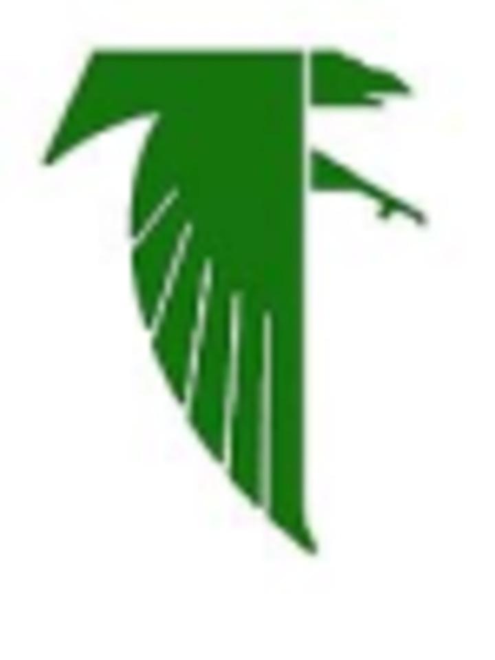 Blair Oaks High School mascot
