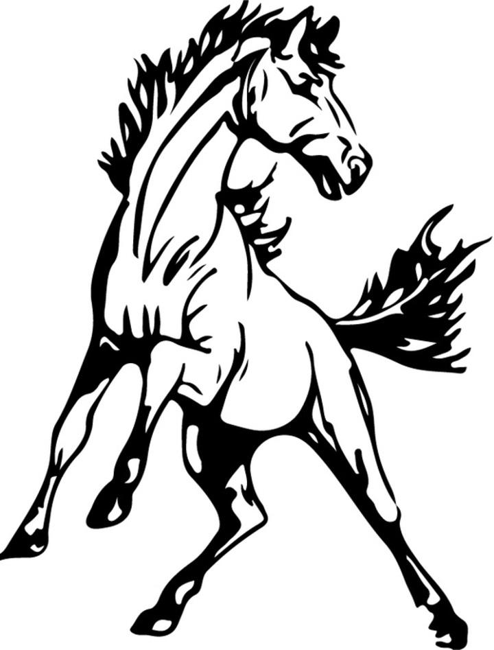 Unity/Seymour Co-op mascot