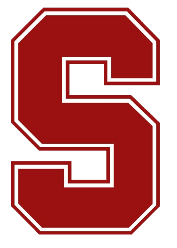 South Salem High School mascot