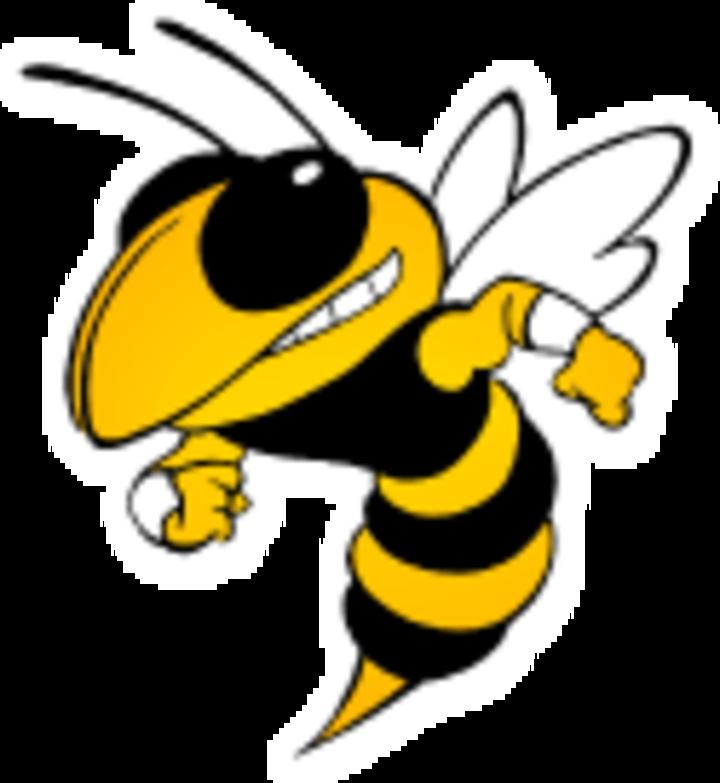 Calhoun High School mascot
