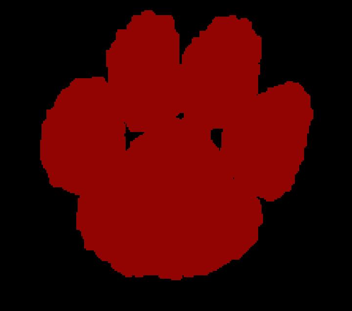 Copper Basin High School mascot