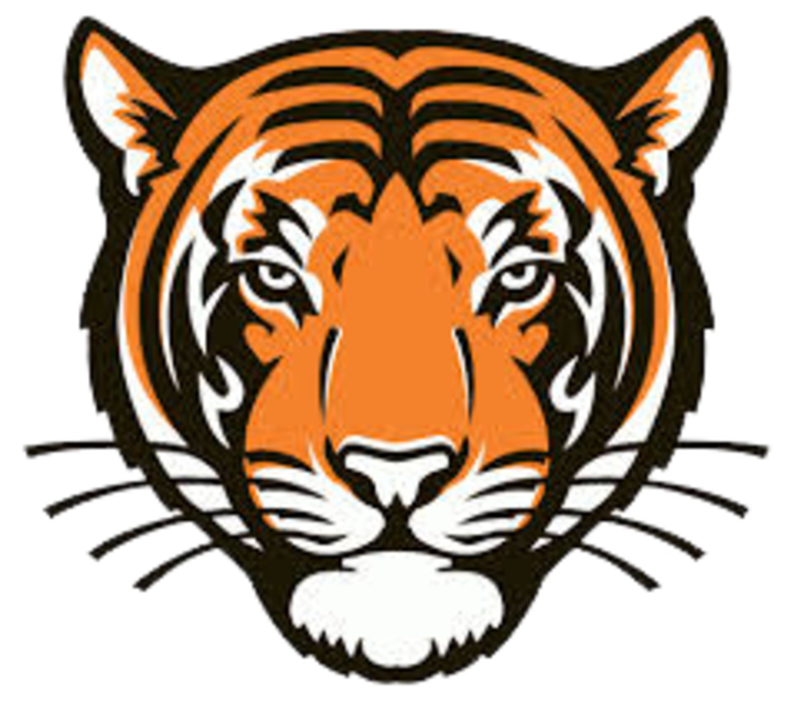 Meigs County High School mascot