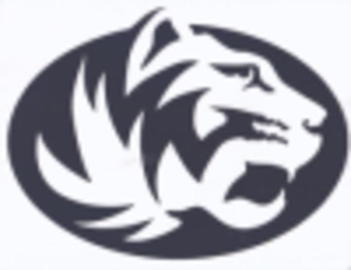 Scotland Co. High School mascot