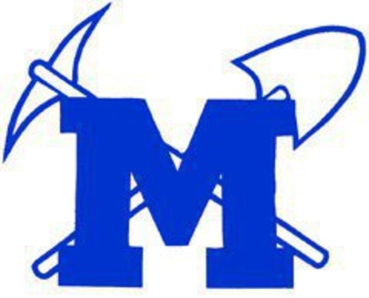 Minersville Area High School mascot