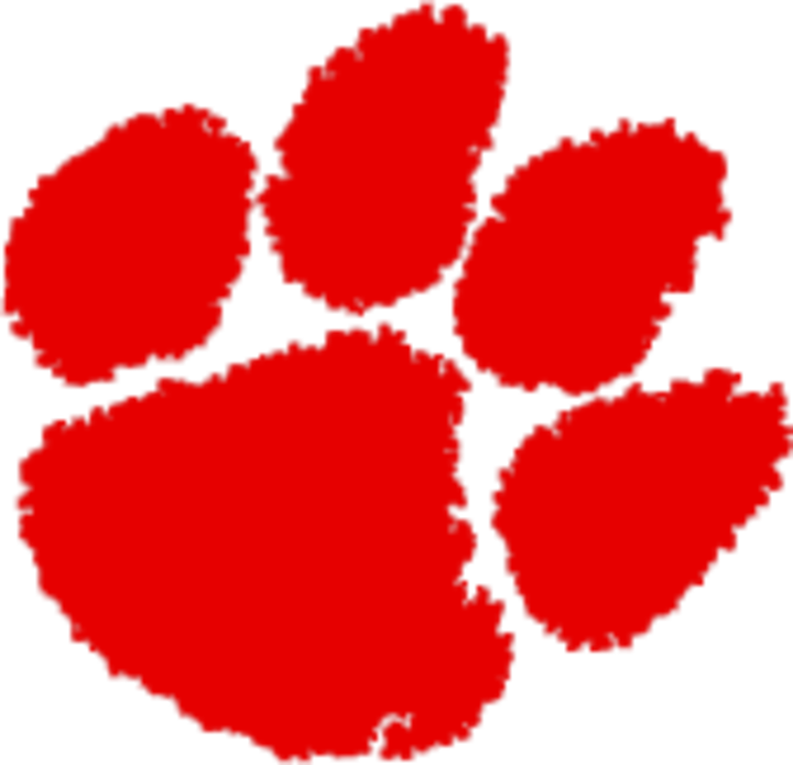 Whitwell High School mascot