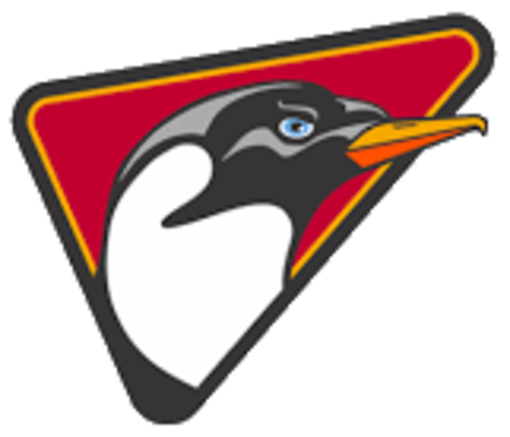Dallas Penguins mascot