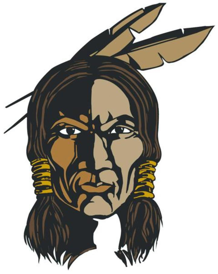 Warren G Harding High School mascot