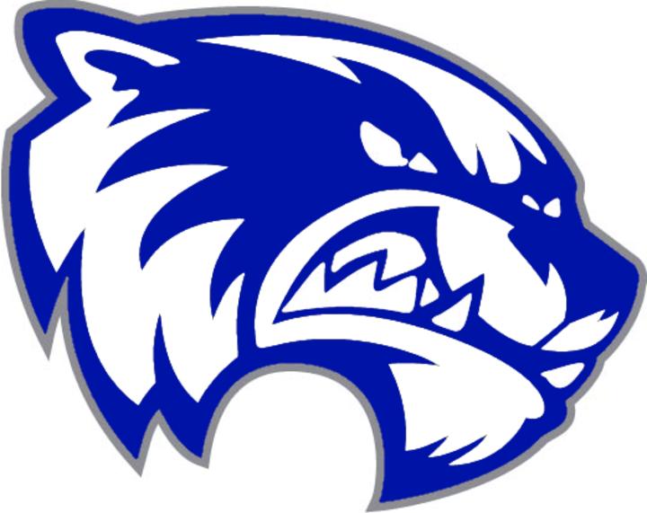 Lincoln Junior-Senior High School mascot