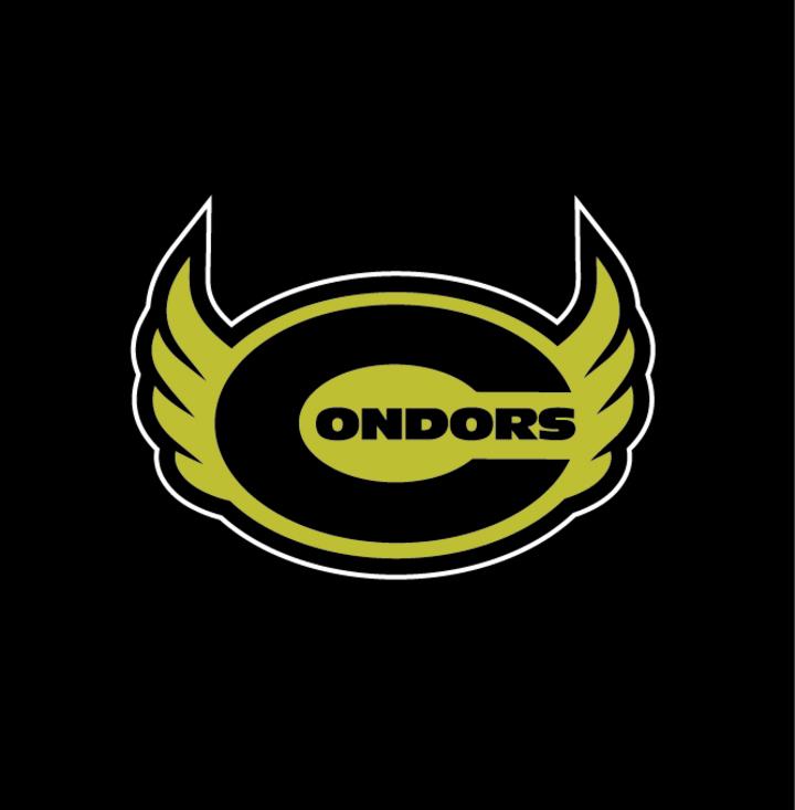 Condors CDMX mascot