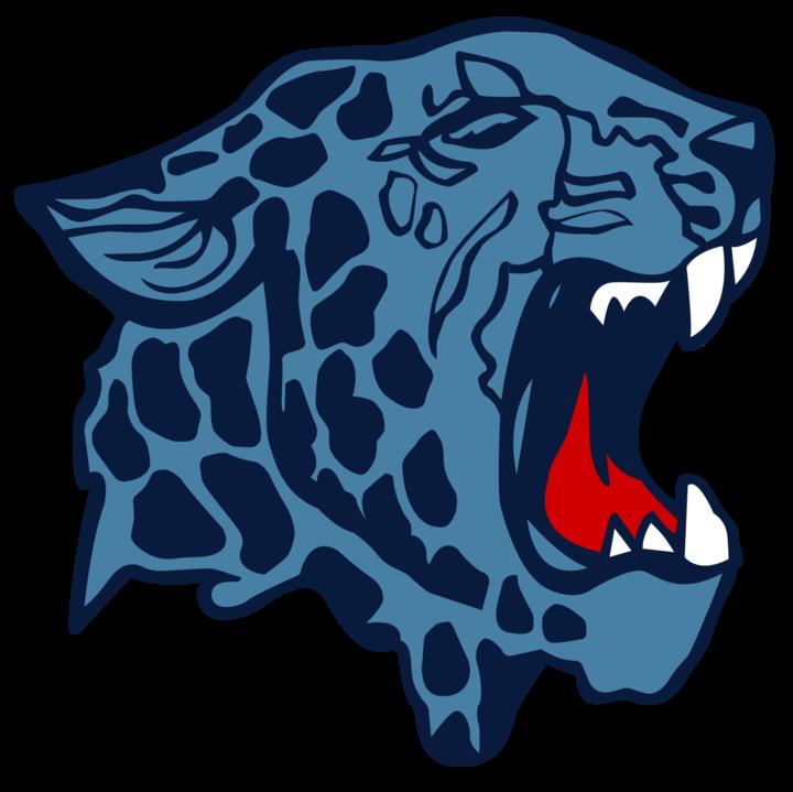 Louisville High School mascot
