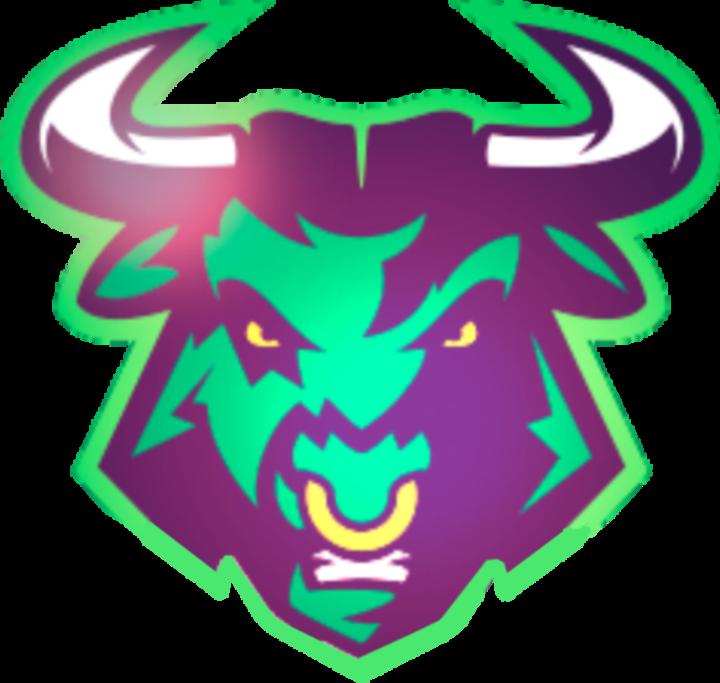 Bulls Potiguares mascot