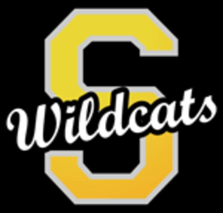 Seiling High School mascot