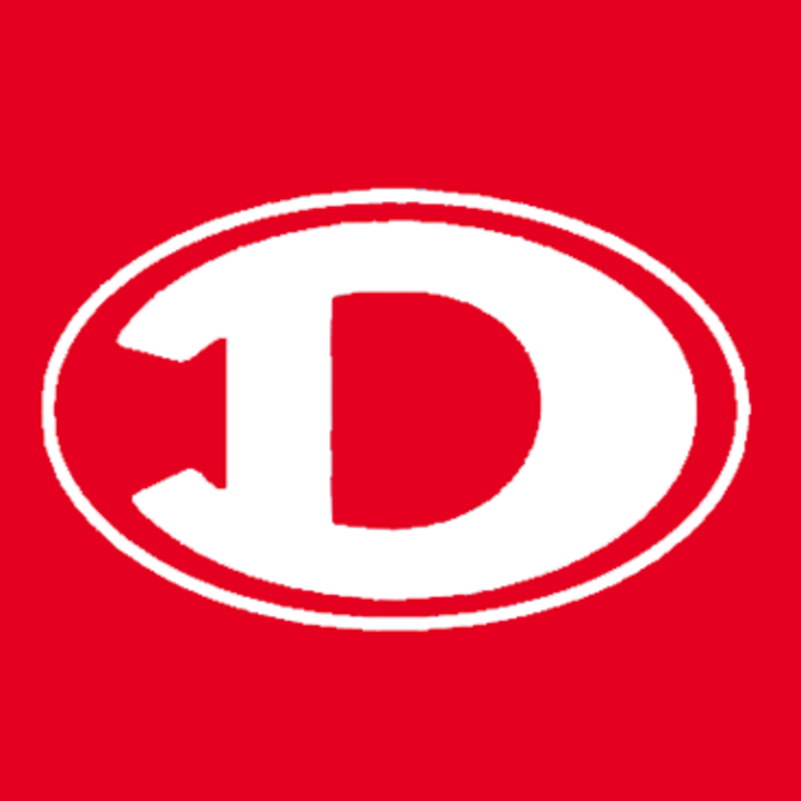 Diboll High School mascot