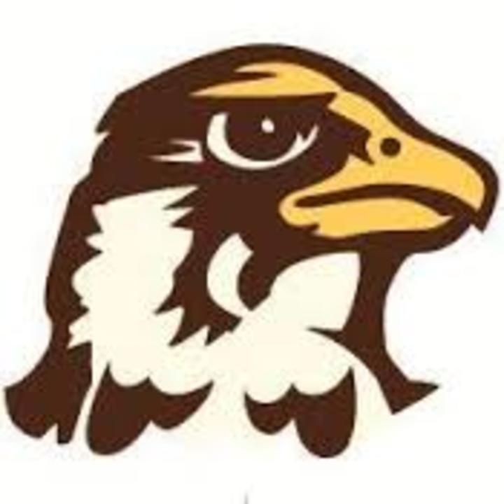 Quincy University mascot