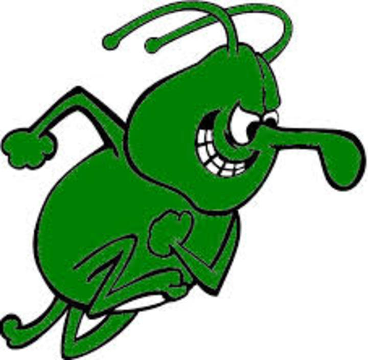 University of Arkansas-Monticello mascot