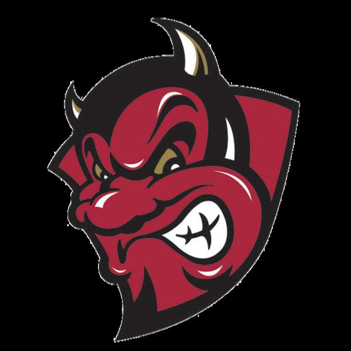 Bismarck High School mascot