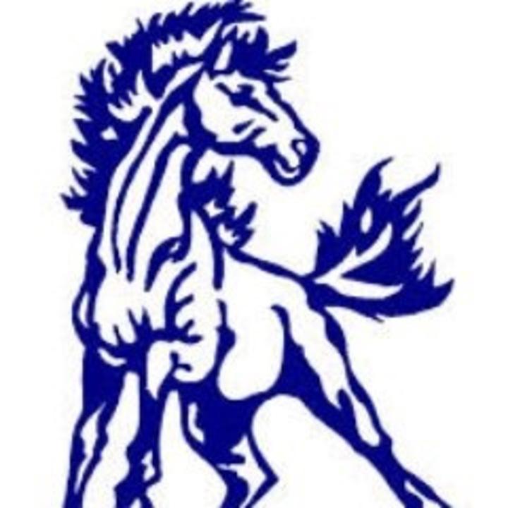 Parkland High School mascot