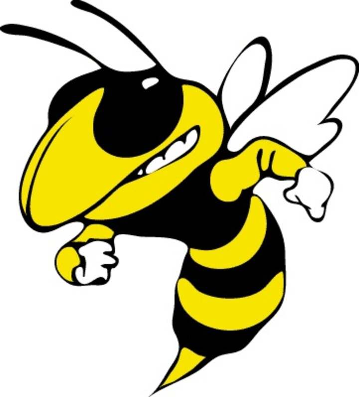 Perham High School mascot