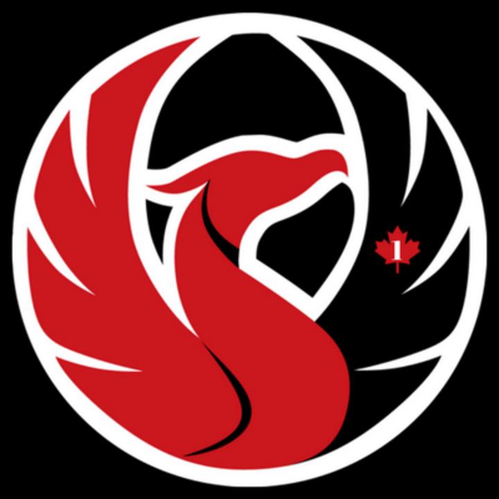 2016 - UTM mascot