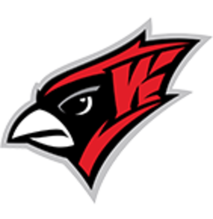 Willmar High School mascot