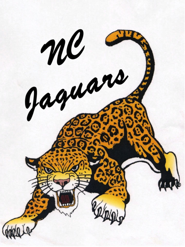 Northern Cass High School mascot