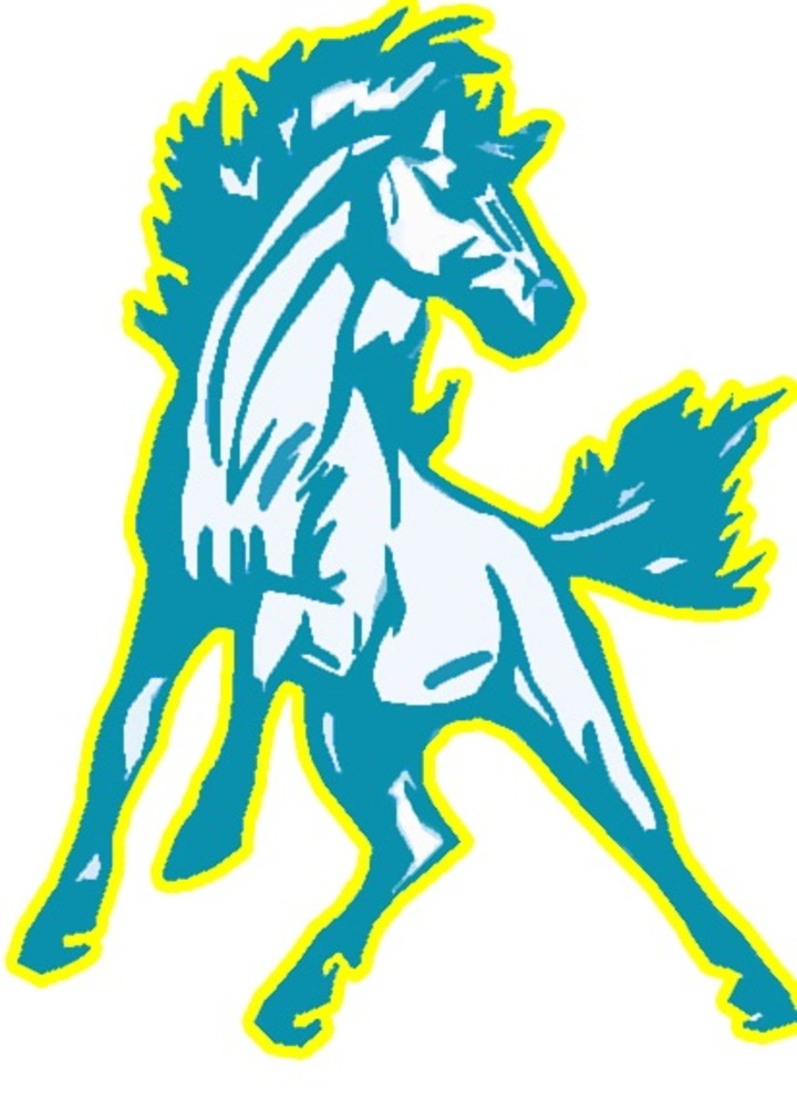 Richland High School mascot