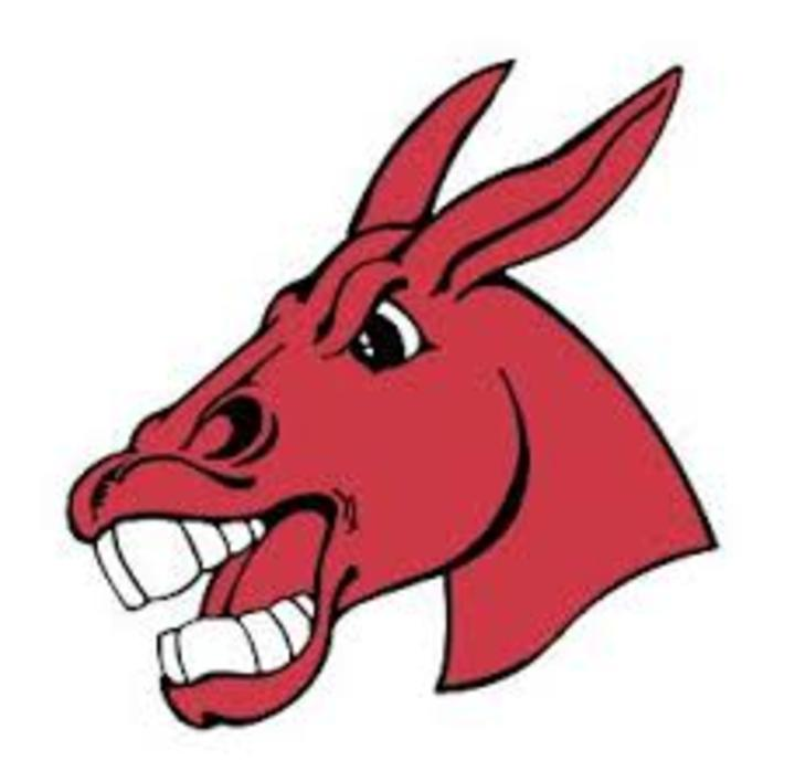 University of Central Missouri mascot