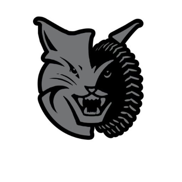 2016 - Brantford mascot