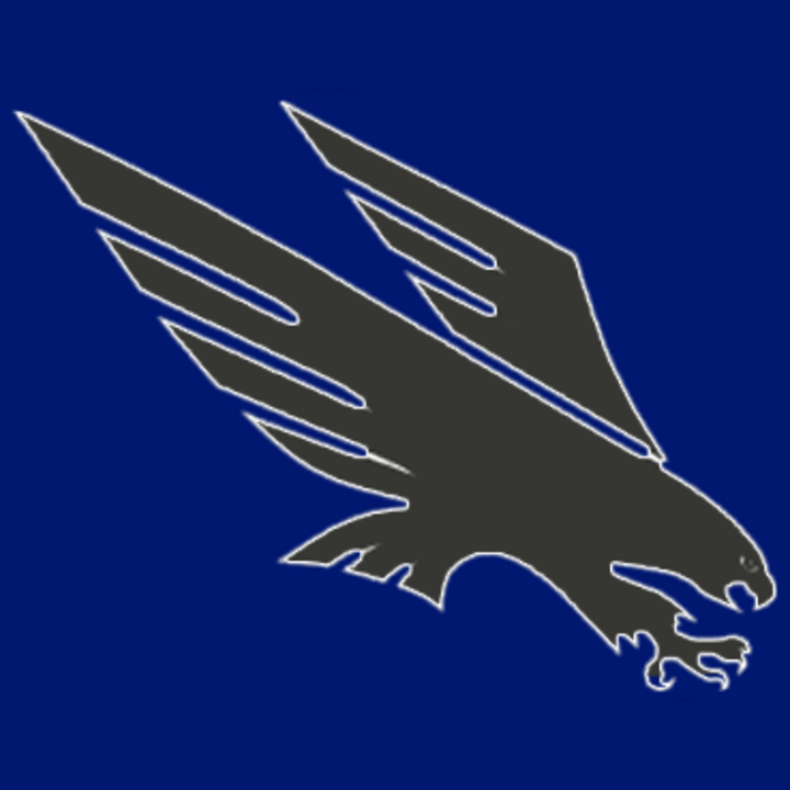 Our Lady of the Hills High School mascot