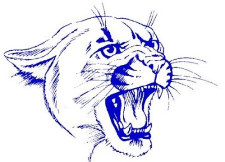 Norman County West High School mascot