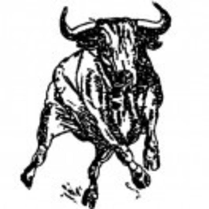 Martin County West High School mascot