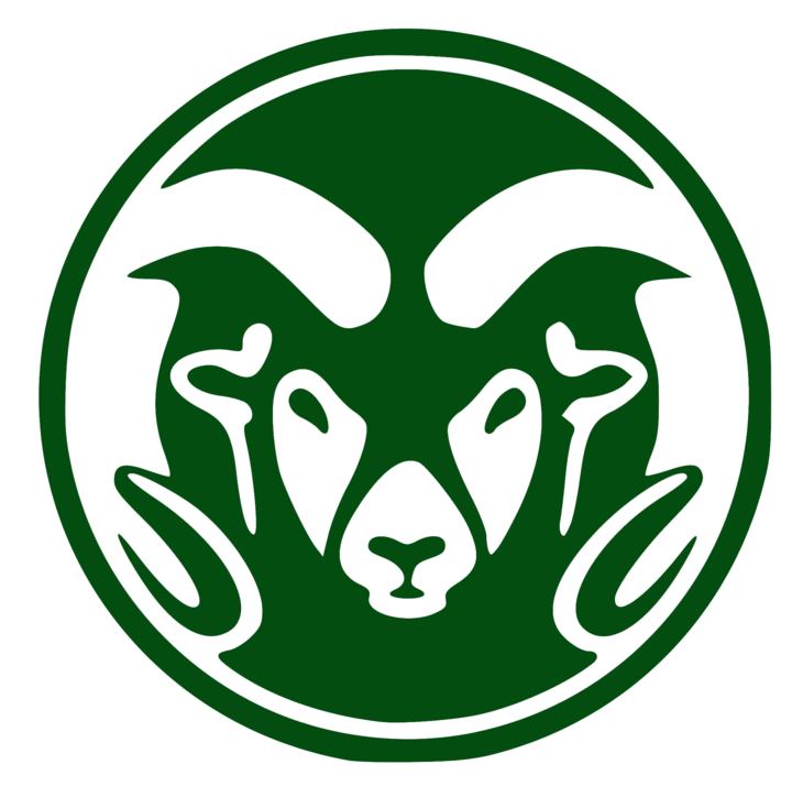 Tinora High School mascot