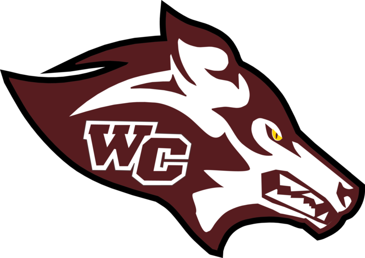 Watford City High School mascot