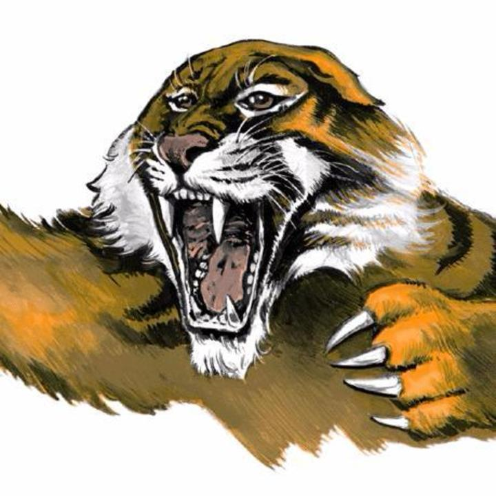 Rush City High School mascot