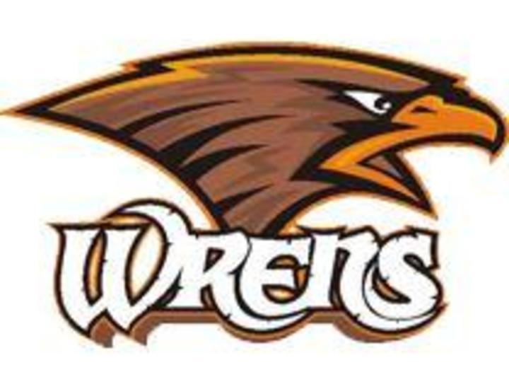Wrenshall High School mascot