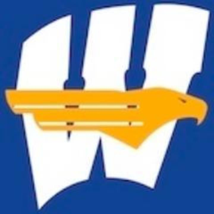 Windom High School mascot